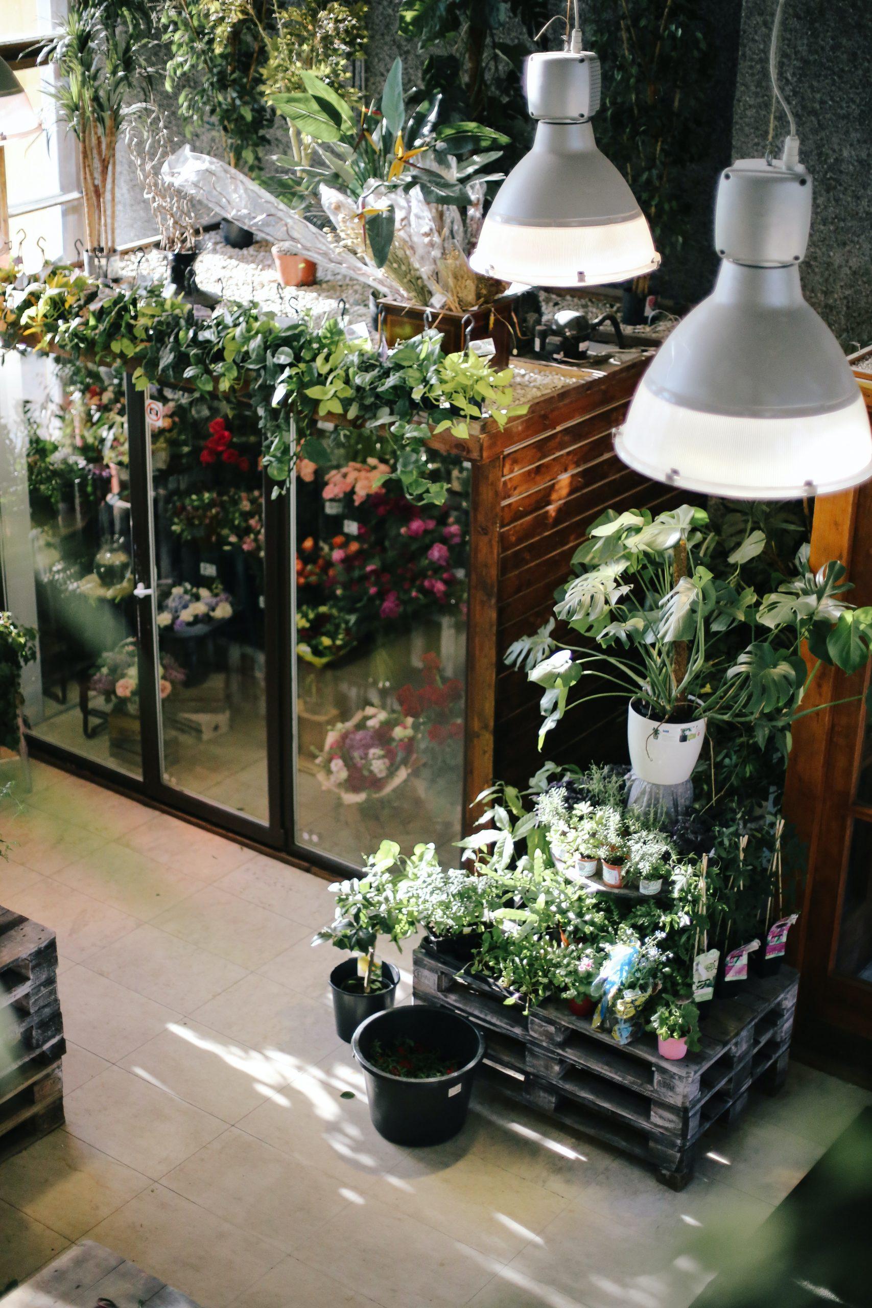 Improving Your Garden Lighting Installation